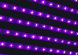 ledlampenfabriek webshop